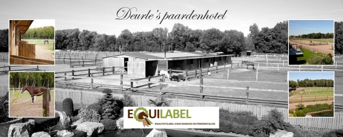 paardenhotel equilabel